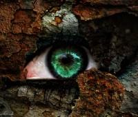 Der-Kalte-Blick