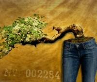 Surreale Jeans Mode